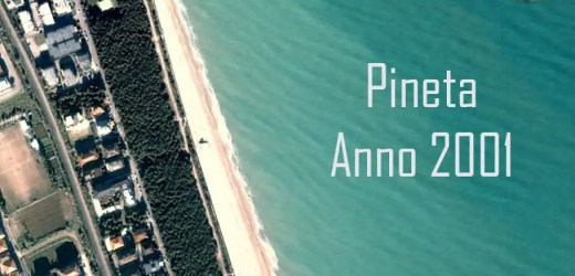 Come si è modificata la pineta di Porto S. Elpidio negli ultimi 20 anni?