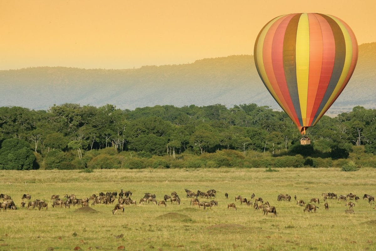 Experience the beauty of the Masai Mara national reserve from the skies