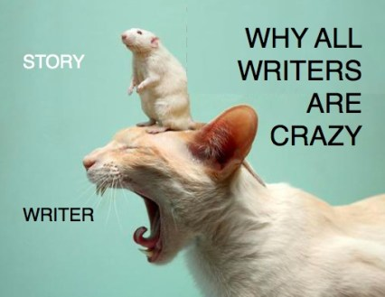 A Writer during NaNoWrimo (a crazy cat)