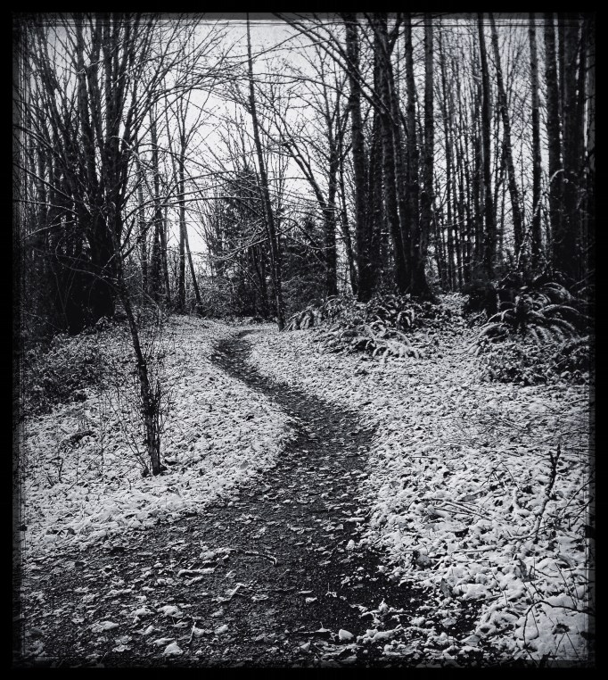 BWSnowTrail