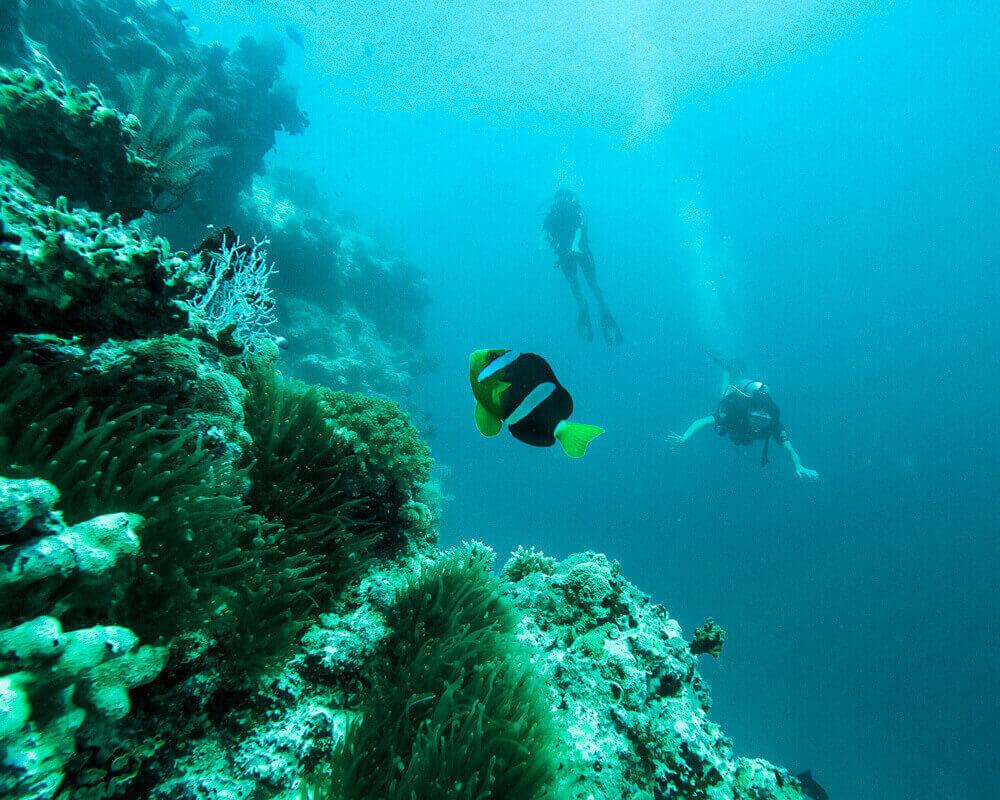 Los mejores Instagram spots de Maldivas MaafushiLos mejores Instagram spots de Maldivas Maafushi