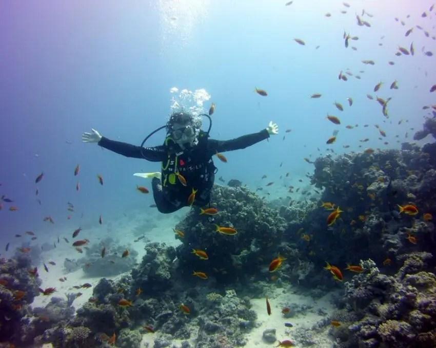 qué hacer en Egipto: bucear en Hurghada