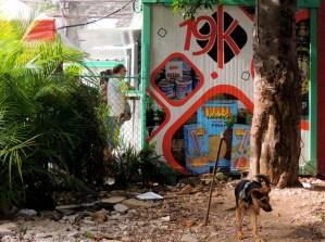 La Habana, cafeteria 19 y K 2014