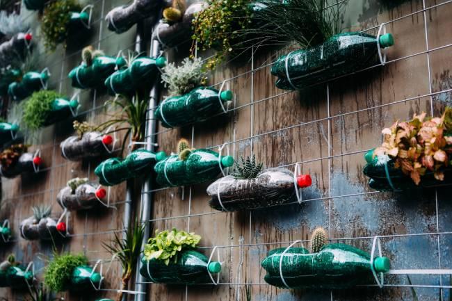 Ideas para reutilizar botellas de plástico - jardín vertical