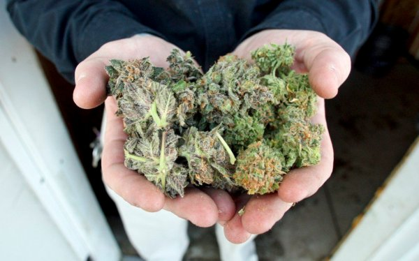about us 3 Serene Farms Online Dispensary