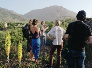 permaculture helping