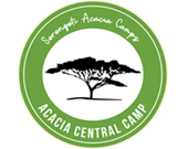 Serengeti acacia central camp