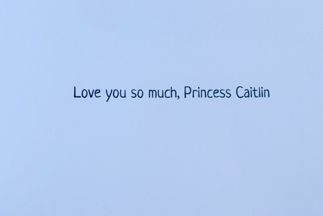 princess caitlin book 2