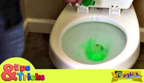 Φοβερό: Ρίχνει υγρό πιάτων μέσα στην τουαλέτα! Δείτε το γιατί …