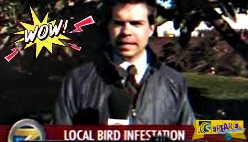 Πουλί κουτσούλησε ρεπόρτερ στο στόμα σε ζωντανή μετάδοση!