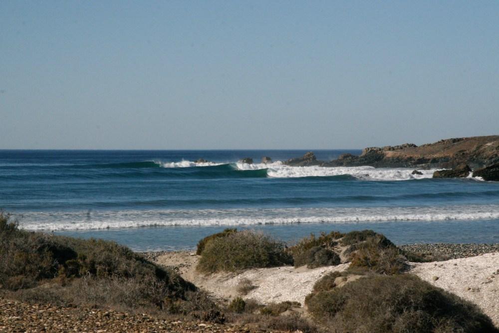 Surf and Turf: The Baja Renaissance (4/6)