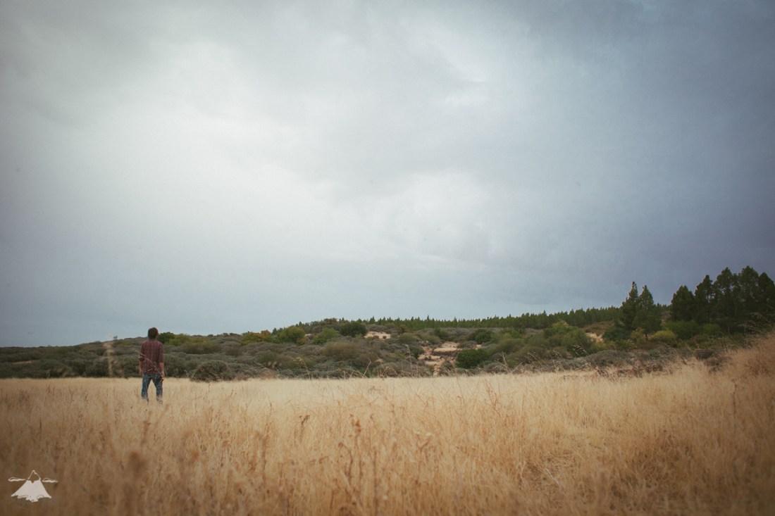 Paseo por las nubes-4