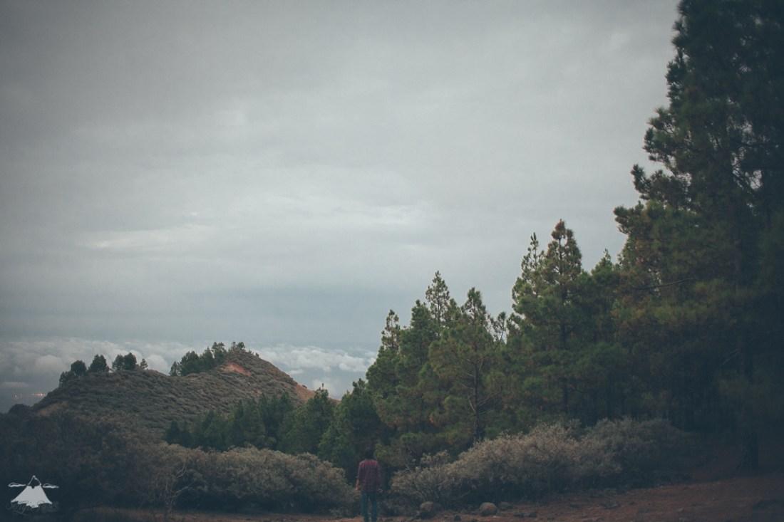 Paseo por las nubes-7