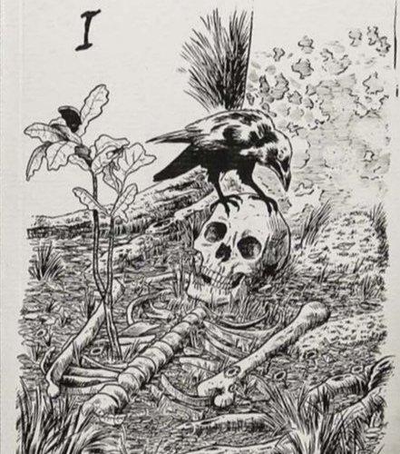 Nuevo libro en el que participo: Scripta natura I