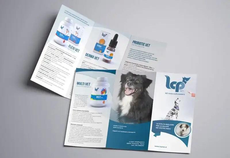 lcp_brochure