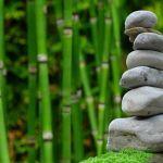 Ikigai; Avanzar hacia la autorrealización