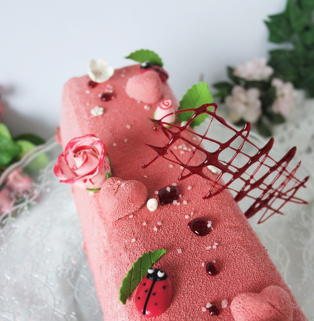 ob_9194b6_buche-glacee-coco-fruits-rouges-gen