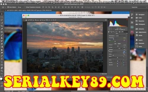 Adobe Camera Raw 13.2