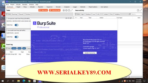 Burp Suite Professional 2021.4.2 Build 7263