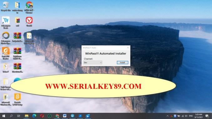 WinPass11 0.1.2 Stable