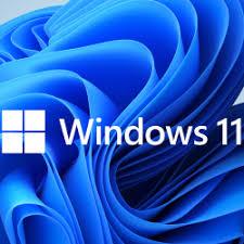 windows 11 insider logo
