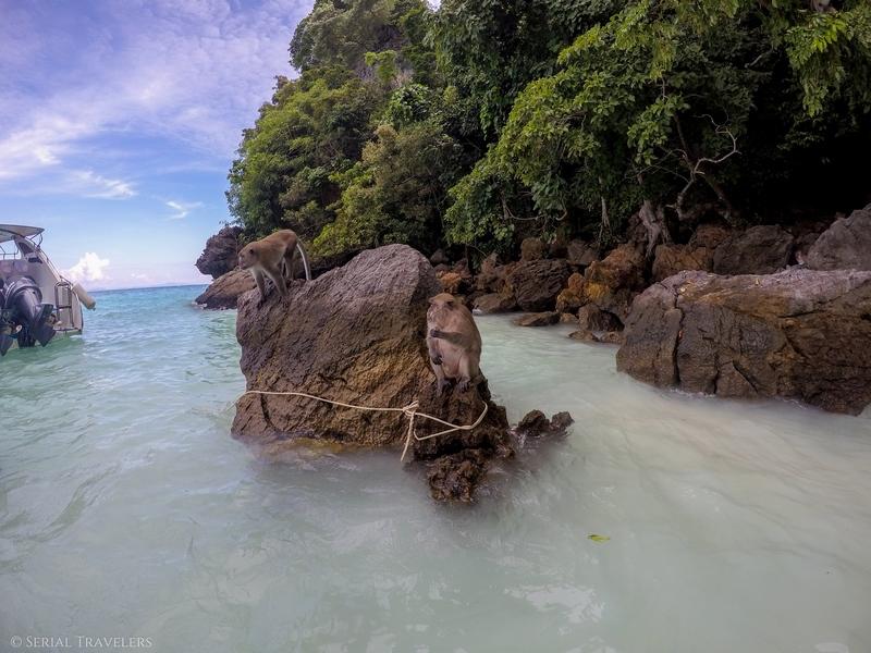 serial-travelers-thailand-koh-phi-phi-monkey-beach6