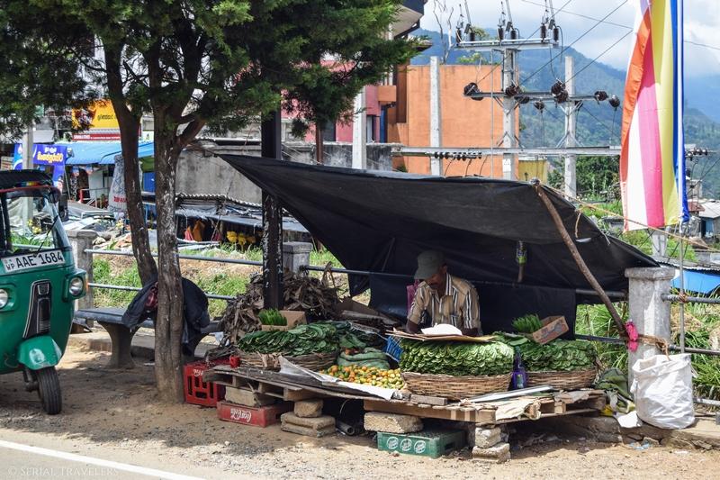 serial-travelers-sri-lanka-trajet-bus-local-ella-negombo-market