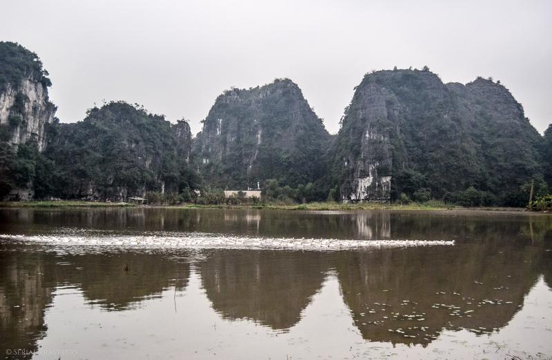 serial-travelers-vietnam-ninh-binh-tam-pain-sucre-oie