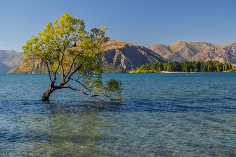Wanaka et ses lacs, la carte postale de la Nouvelle-Zélande !