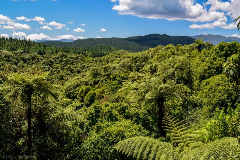 serial-travelers-nouvelle-zelande-waimangu-volcanic-valley1