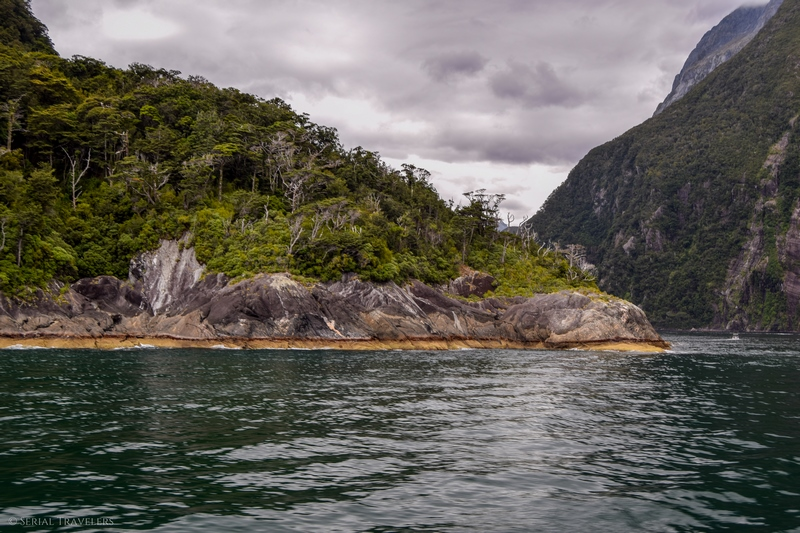 serial-travelers-nouvelle-zelande-milford-sound-cruise23