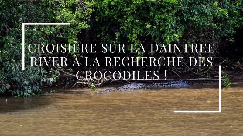 Croisière sur la Daintree River à la recherche des crocodiles !