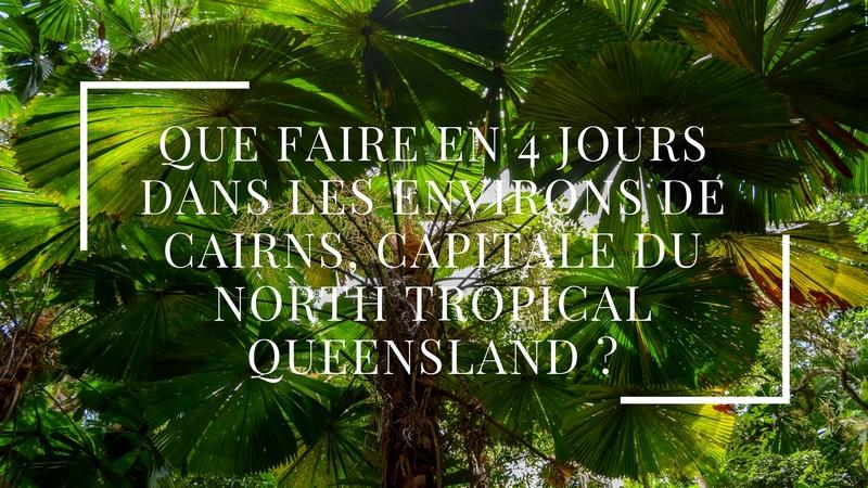 Que faire en 4 jours dans les environs de Cairns, capitale du North Tropical Queensland ?