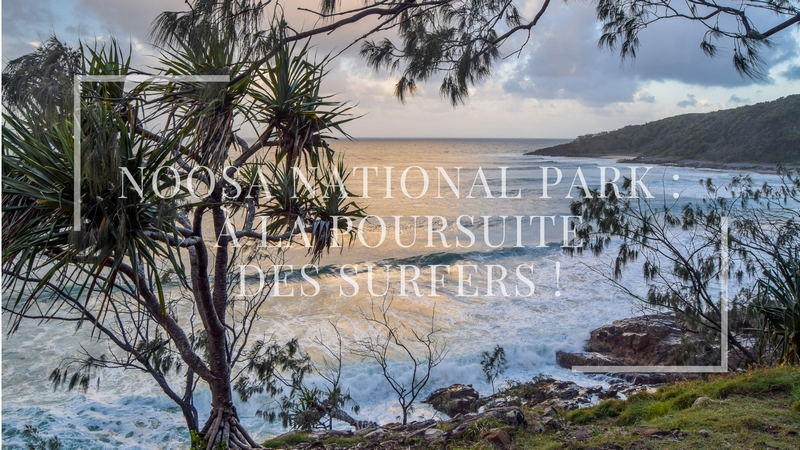serial-travelers-australie-noosa-playfair