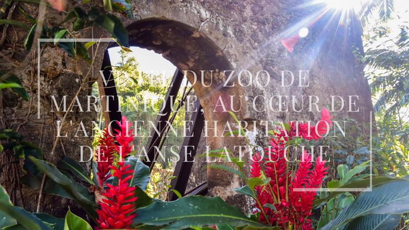 Visite du zoo de Martinique, au cœur de l'ancienne habitation de l'Anse Latouche