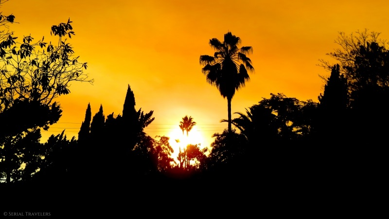 serial-travelers-usa-ouest-americain-los-angeles-west-hollywood3-wattles-garden-park
