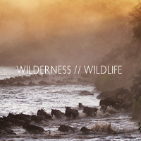 wilderness_wildlife