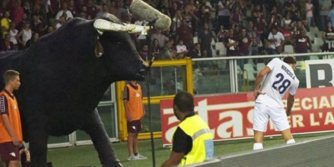Alonso dompte le Toro