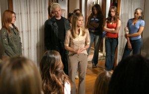 Buffy fin