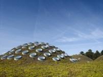 Academy of Science - Renzo PIano