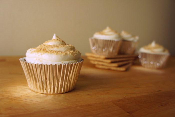 Graham Cracker Cupcakes with Lime Buttercream Frosting | Serious Crust