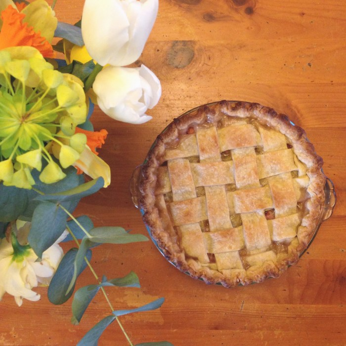 Strawberry Rhubarb Pie | Serious Crust by Annie Fassler