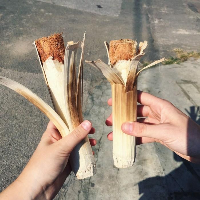 Chiang Mai, Thailand | Serious Crust by Annie Fassler