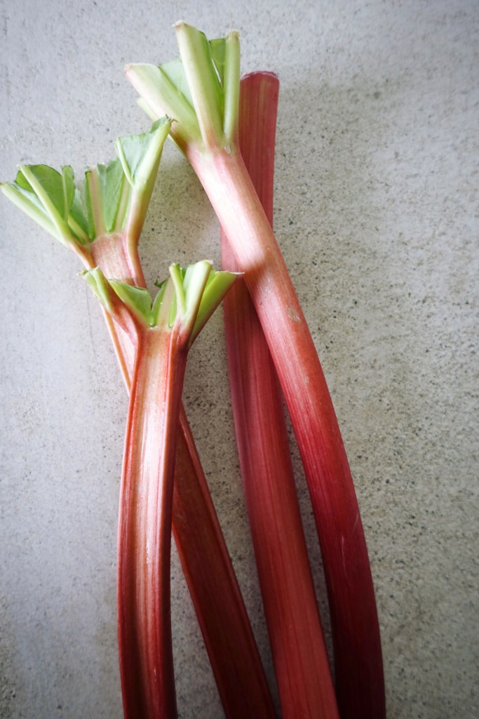 Rhubarb Galette with Ginger and Cardamom | Serious Crust by Annie Fassler