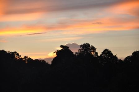 Merimbun Sunsets 102