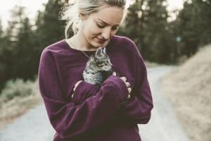 gatos y toxoplasmosis