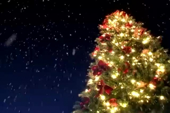 Free Snow Falling Wallpaper Christmas Tree Snow Motion Background Motion Worship