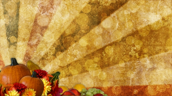 Fall Harvest Wallpaper Images Thanksgiving Blank Still Image 4 Hd And Sd Vertical
