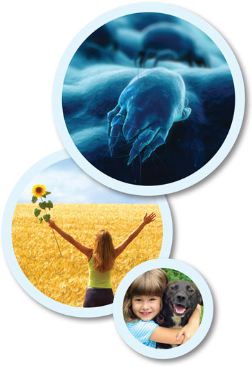 Dust mite allergens, woman in field, girl hugging dog photo collage.
