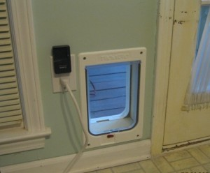 pet door in place, finally
